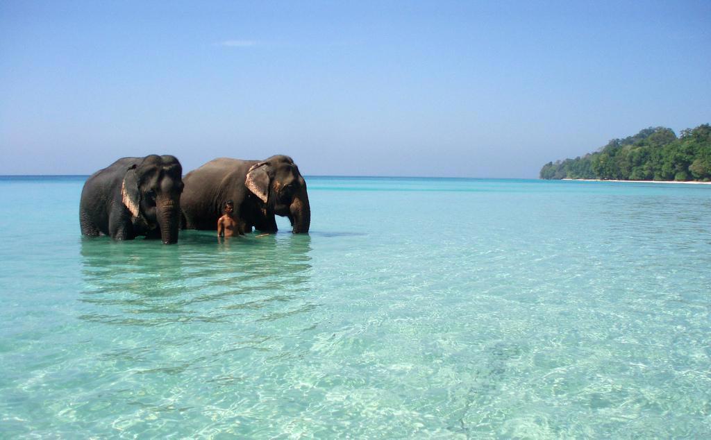 radha nagar havelock island kerala