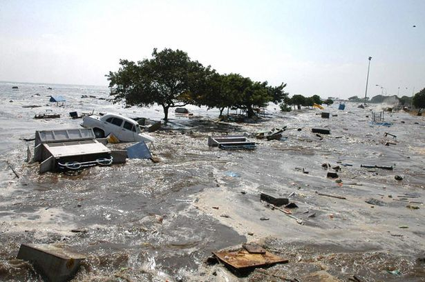 2004 Tsunami Chennai