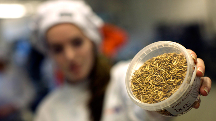 UN's Solution To Fight World Hunger- Edible Insects!