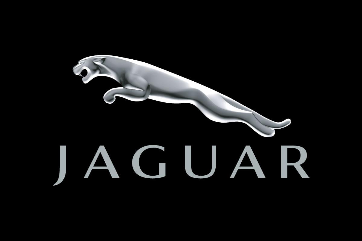 jaguar logo indian nerve