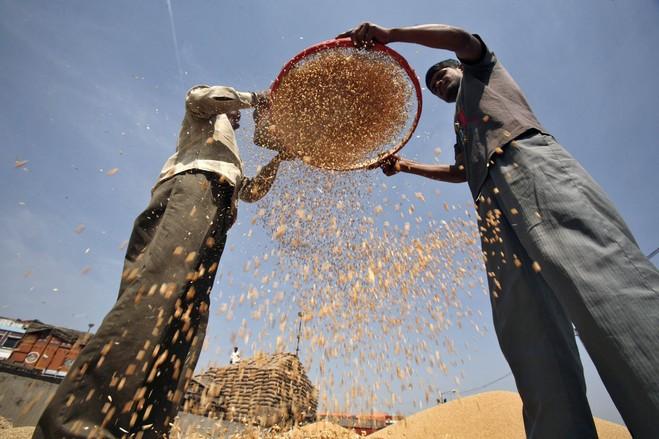 Food Security, Etc.