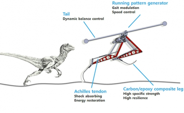 Korean Velociraptor Robot Is The Fastest Biped That Can Outrun Usain Bolt; Top Speed – 46 Km/Hr.