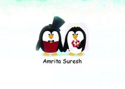 'When A Lawyer Walks Down The Aisle' By Amrita Suresh   Book Review