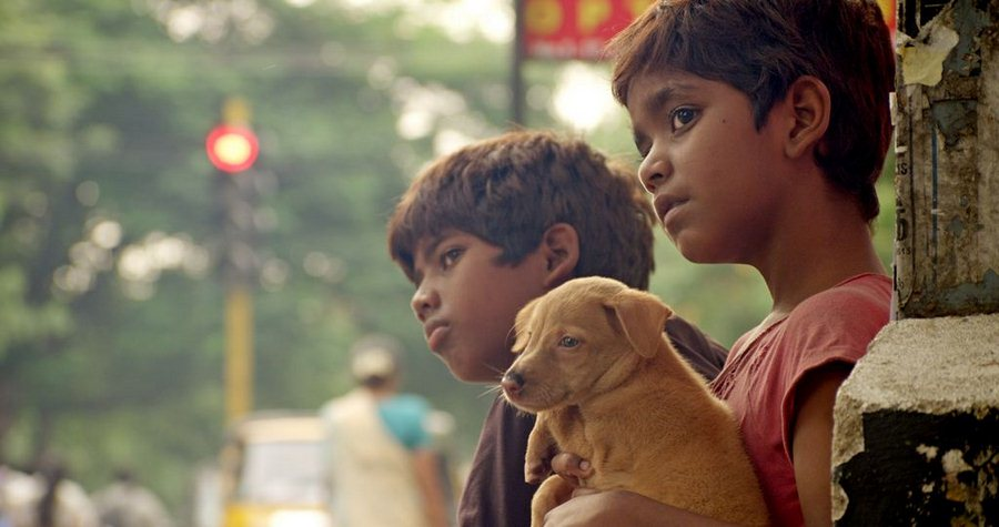 Kaakka Muttai | Tamil Movie Review