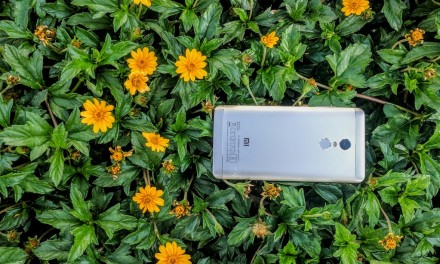 Xiaomi Redmi Note 4 Review : Pushes the Boundaries of the Best Budget Phone